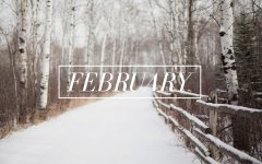 Fantastic February Vacations