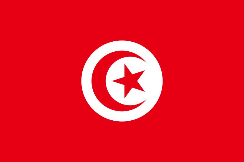 The+Flag+of+Tunisia