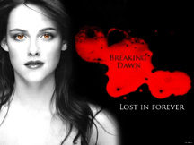 Breaking Dawn continues the Twilight series with great success