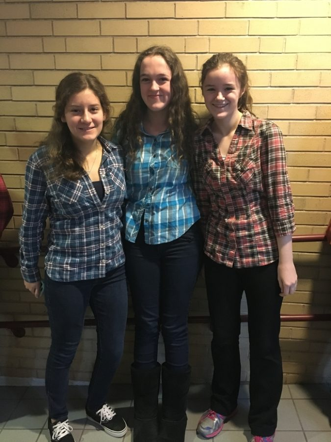 Flannel Friday Features Fantastic Participation
