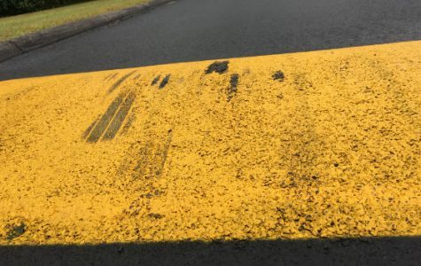 Speed bumps installed to slow down students