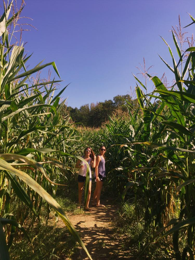 Senior+Catarina+Sanches+%28left%29+and+junior+Rafaela+Fernandes+pose+in+the+middle+of+the+Randall%27s+Farm+corn+maze.