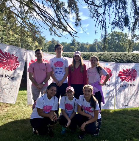 NHS battles breast cancer at Rays of Hope Walk