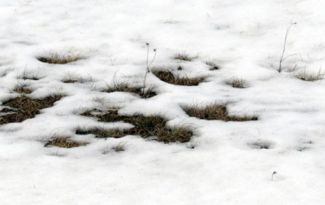 Extreme weather conditions normal in New England